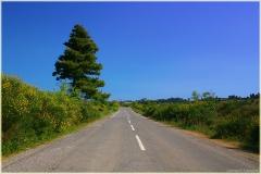 Дорога по вершине горы
