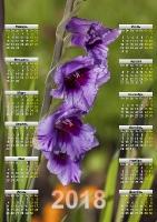 Красивый календарь на 2018 год. Цветок. Гладиолус