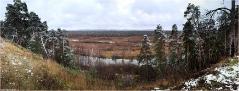 Поздняя осень. Пейзаж с соснами. Панорамные фотографии высокого разрешения. Фотопанорамы