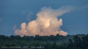 Про странное желтое облако, которое поднималось над лесом...