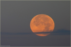 Красная луна. Фото