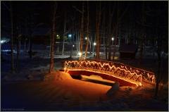 Красивый зимний лес. Мостик. Фото. Новогодние открытки