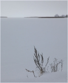 Стремление к бесконечности. Красивые спокойные картинки. Зимний пейзаж
