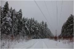 Зимние сумерки. Высоковольтная линия в лесу. Фото
