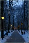 Вечерний парк, фонари, тропинка. Зимний пейзаж в городском парке