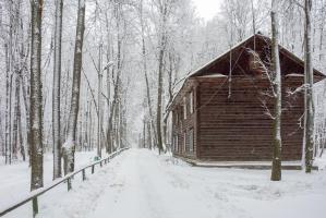Деревянный дом в заснеженном лесу