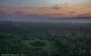 Вечером за деревней. Фото тумана