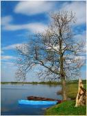 Весенний пейзаж с дубом и лодками