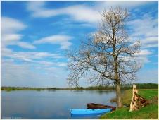Весенний пейзаж с дубом и лодками. Горизонтальное фото