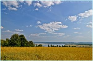 1 сентября 2014 г. Русское поле