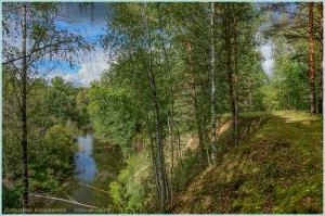 Солнечный день. Ранняя осень в лесу. Речка Суворощь