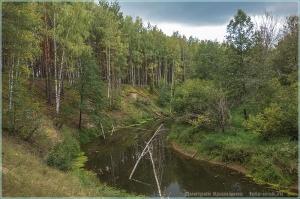 Лесная река. Обрыв. Пасмурный осенний полдень