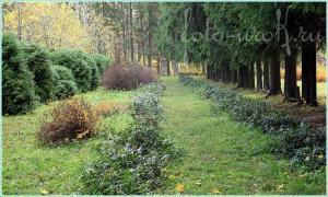 Нехоженные тропы частной усадьбы