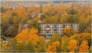Яркая осень. Вид из окна