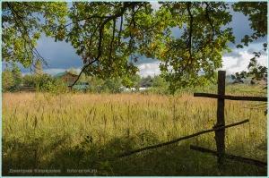 Деревня на опушке леса. Деревянный забор. Фото