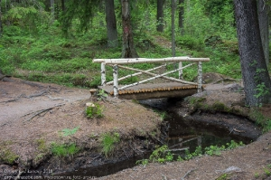 Скальный парк Монрепо. Деревянный мостик через ручей