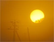 Фото восхода солнца. Солнце за деревьями и столбы в тумане