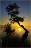 Восход солнца над озером. Вертикальное фото