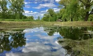 Летний пейзаж с прудом и бревенчатой банькой