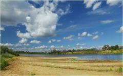 Река Клязьма. Солнечный день. Красивые облака. Фото. Летний пейзаж