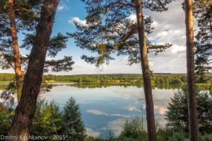 Лесное озеро. Фото. Памятник природы Святое озеро. Пушкино