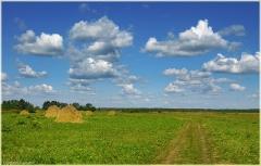 Луговая дорога. Стога сена. Самые красивые фото лета 2011