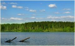 Свято озеро у п. Тумботино. Самые красивые фото лета 2011