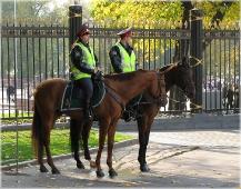 Конная милиция у Александровского сада. Фото Москвы