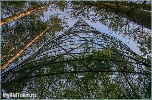 Фотографии Башни Шухова и деревьев вокруг
