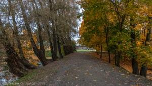 Усадьба Пушкиных в Болдино. Плотина между прудами
