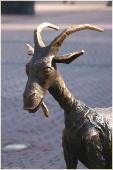 Коза на Большой Покровке. Металлические скульптуры. Фото Нижнего Новгорода. Городской пейзаж