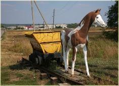 Статуэтка лошади, везущей вагонетку. Пешелань. Музей в шахте