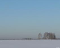 Обои на рабочий стол. Зимние пейзажи. Поле. Снег Березы. 1280х1024