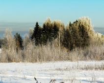 Обои на рабочий стол. Скачать бесплатно. Зимние пейзажи. Опушка леса. 1280х1024