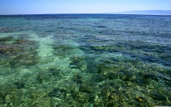 Эгейское море. Чистая вода. Обои на рабочий стол. Скачать бесплатно. Греция. 1440х1024.