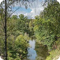 красивые фотографии леса и лесной реки