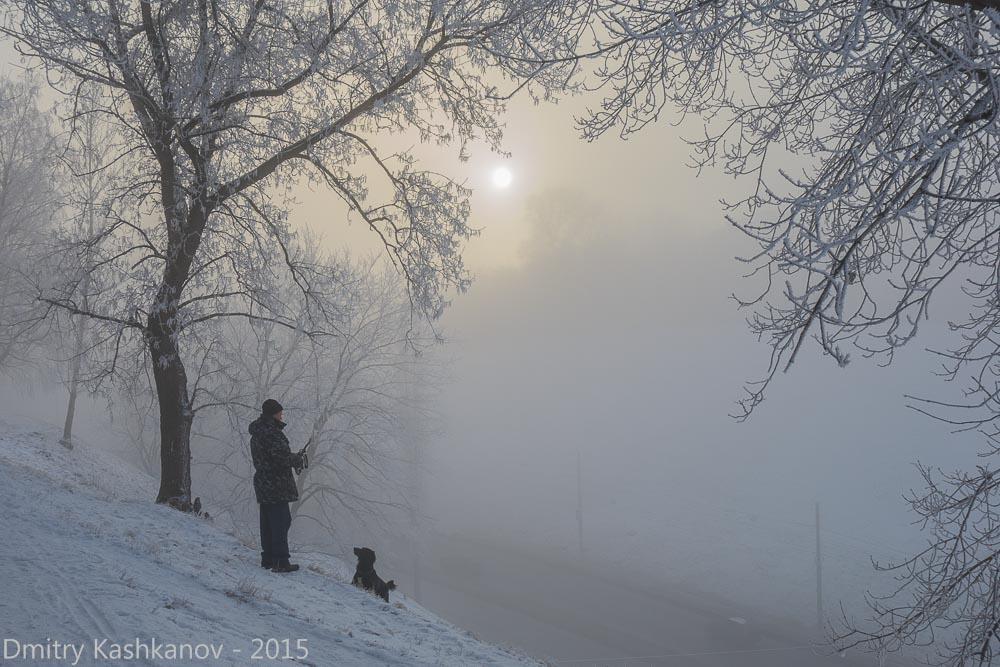 фотография хозяина с собакой