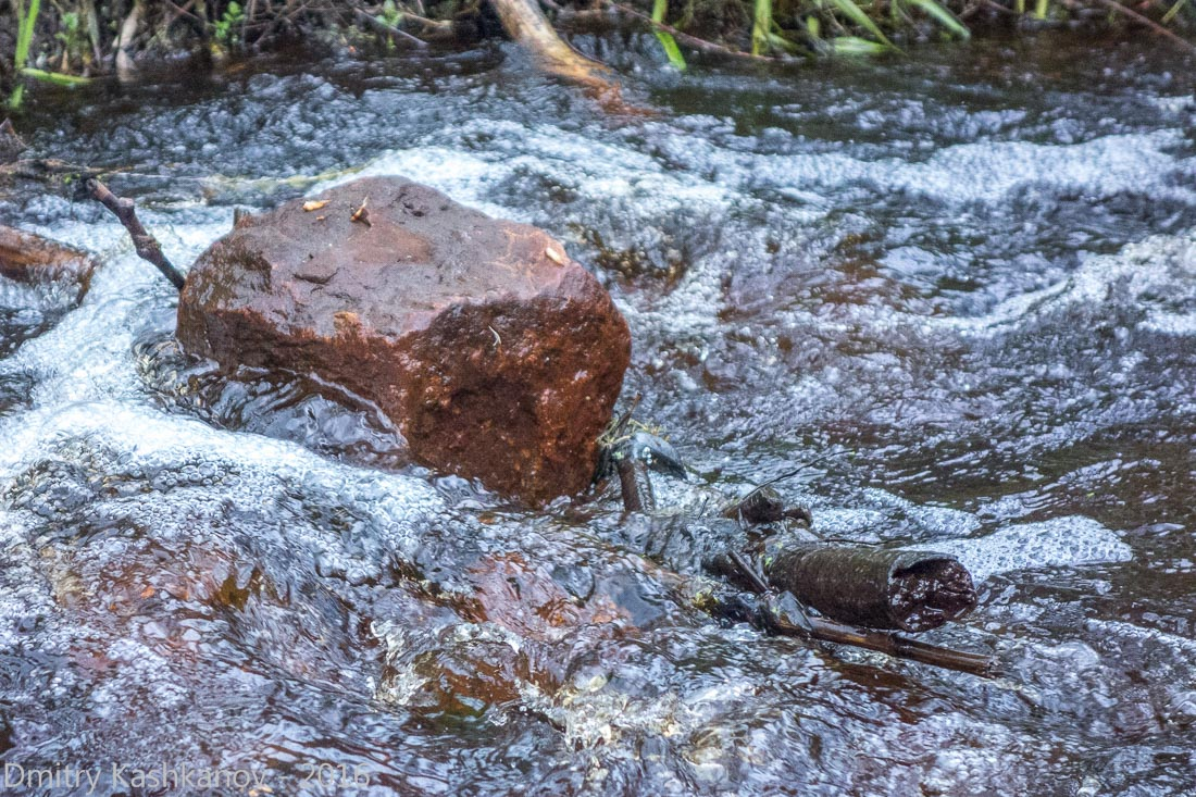 Фотография бурного потока. Короткая выдержка