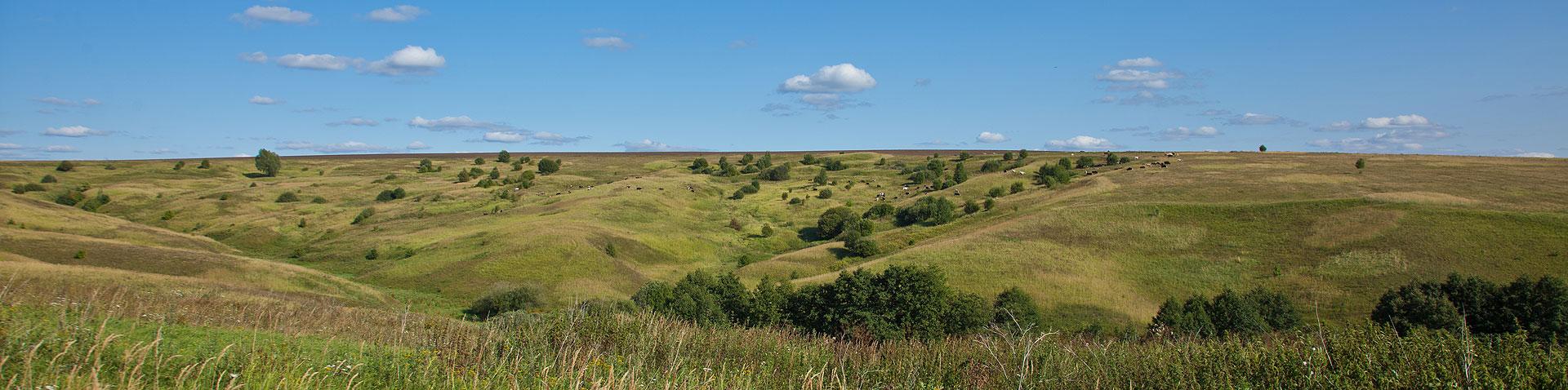 фото панорама холмистая равнина. летний пейзаж