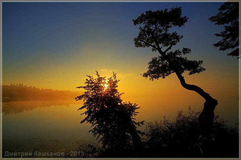 лето. восход солнца