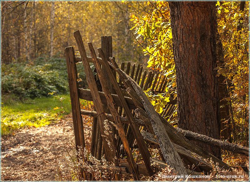 Осенний пейзаж. Осенью все заборы хороши