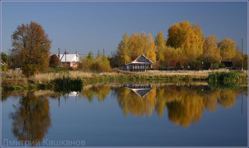 Картинки Осень деревья листва листья золотая осень